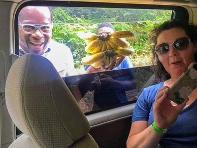 Know Jamaica Driving Guests from Attraction to Attraction in Jamaica